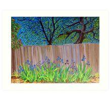 Irises in the backyard Art Print