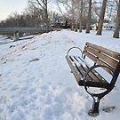 A winter bench by mltrue