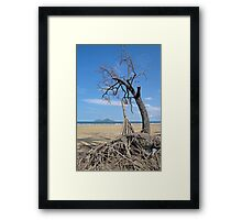 Dunk Island from North Mission Beach Framed Print