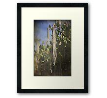 Dangling Framed Print