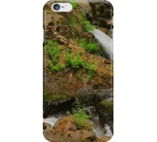 Communing with Nature iPhone Case/Skin