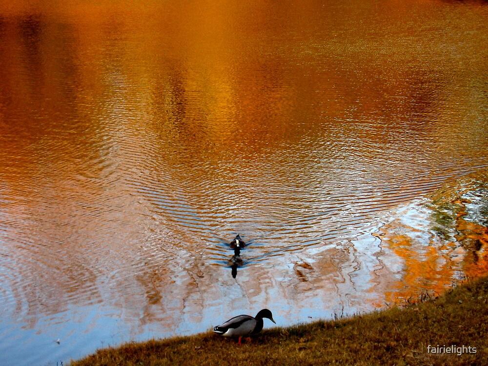 Autumn Reflection by fairielights