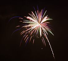 July 4th Firework by TeejM