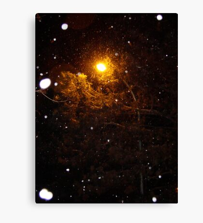 Winter Light Canvas Print
