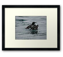 Watery Flight Framed Print