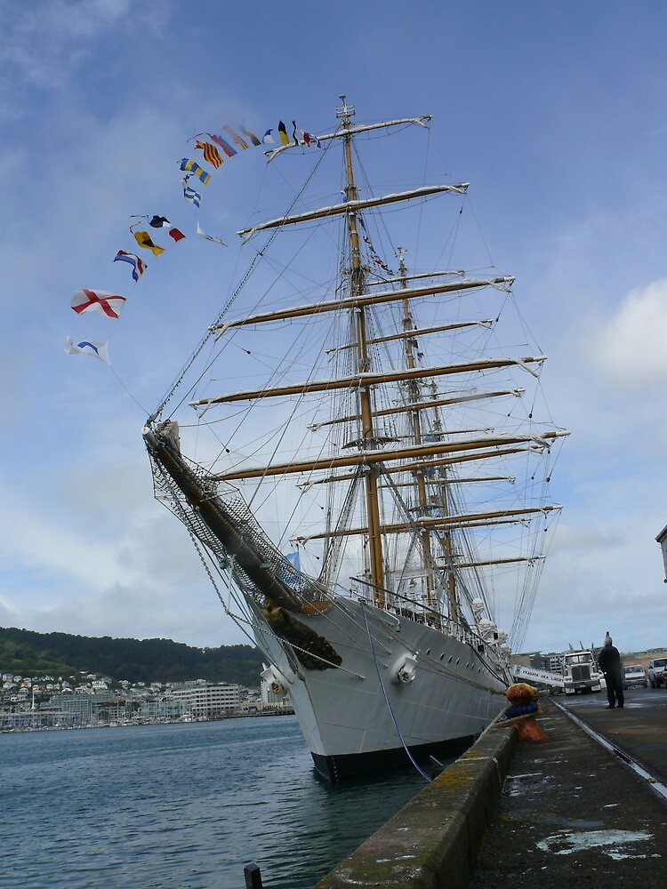Libertad - Argentine Navy training ship (3) by wgtonlifeart
