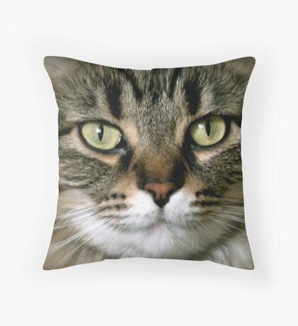 Serious Feline Throw Pillow