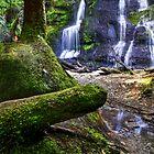 Hendersons Falls by Stephen Ruane