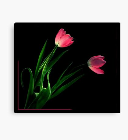 THINK PINK~ Canvas Print