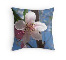 Nectarine Blossom Throw Pillow