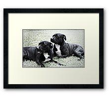 Sasha & BJ Framed Print