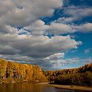 Chena River Alaska by Melissa Seaback