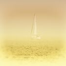 Summer Eveing Sailing On The Lake by Solomon Walker