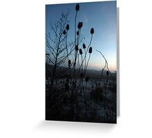 loads of thistles Greeting Card