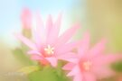 Pastel dream by aMOONy