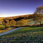 Exmoor Valley by Rob Hawkins
