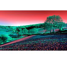 Exmoor in the Pink Photographic Print
