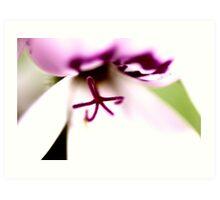 Purple Macro Flower Art Print