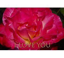 i love you rose Photographic Print