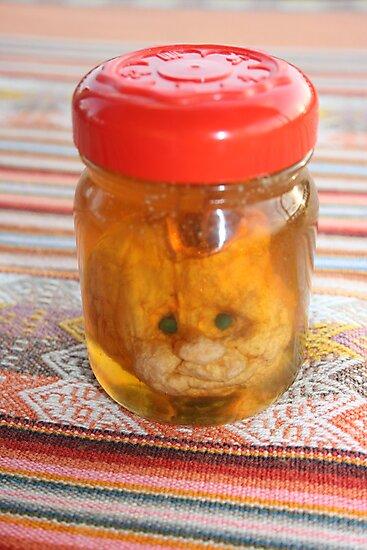 Squashed In A Jar by shazart
