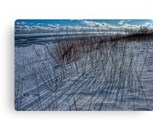 The Coldest Day - Water's Edge Canvas Print
