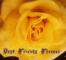 BFF ~ Best Friends Forever by SummerJade