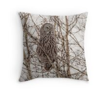 Great Grey Owl Throw Pillow