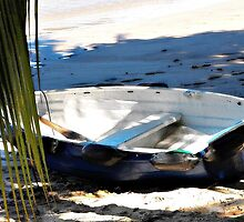 Painterly Boat Beached on Sand by alan John
