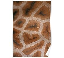 Natural Abstracts - Giraffe Hide Poster
