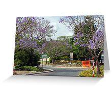 A Brisbane Suburban Street Greeting Card