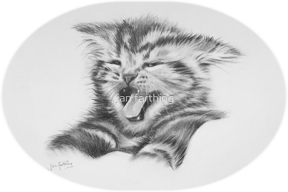 Sour puss. Kitten by jan farthing