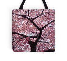 Cherry Tree- Washington DC Tote Bag