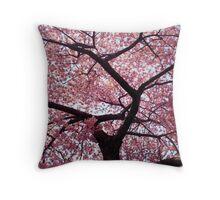 Cherry Tree- Washington DC Throw Pillow