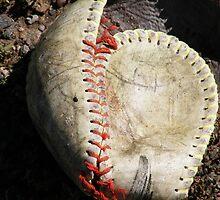 Baseball Shell by Thomas Pastore