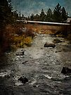 The Riverhouse by Jeff Clark