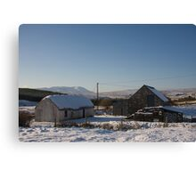 leamagowra winter Canvas Print