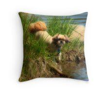 Biddy beside the shore  Throw Pillow