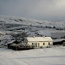 Fullers cottage by conalmcginley
