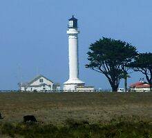 #543    Mendocino Lighthouse by MyInnereyeMike