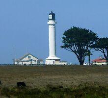 #543    Mendocino Lighthouse by MyInnereyeMike