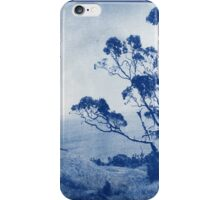 Peach Cove iPhone Case/Skin