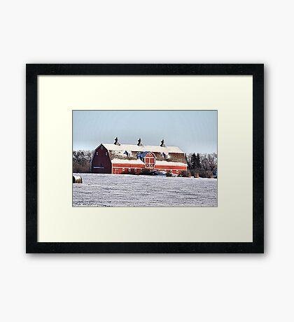 The Three Cupola Barn Framed Print