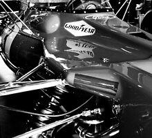 Tyrrell Ford F1 legend. by marc melander