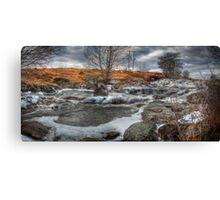 Frosty Stream Canvas Print