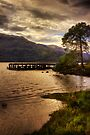 Rowardennan Evening (1) by Karl Williams