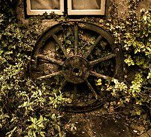 Sage n Ivy & the wheel by Rob Hawkins