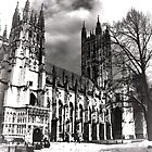Canterbury Cathedral by larry flewers