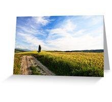 Toscana #3 Greeting Card