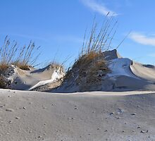 Dusted Dunes by Michele Conner