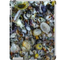 Collection iPad Case/Skin